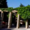המכון לארכיאולוגיה